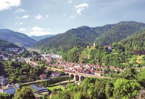 Blick auf Hornberg